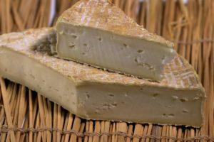 Käse gibt es in tausenden Varianten (Bild:Pixabay/Fotovektor)