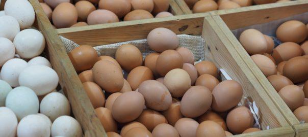 Perfekte Eier der Güteklasse A (Bild:Pixabay/eak_kkk)