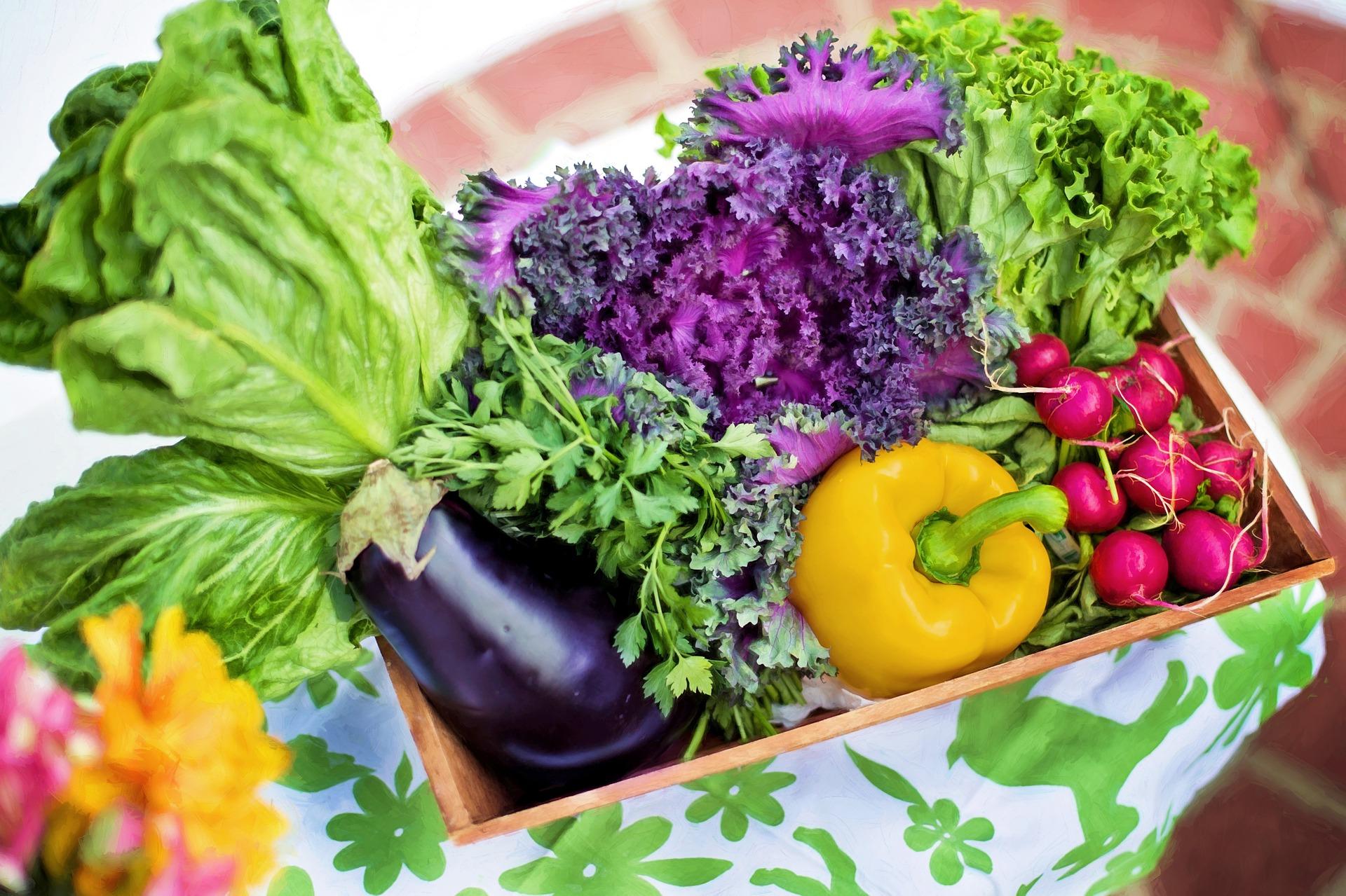 Trend: Online-Kauf von Lebensmitteln immer beliebter