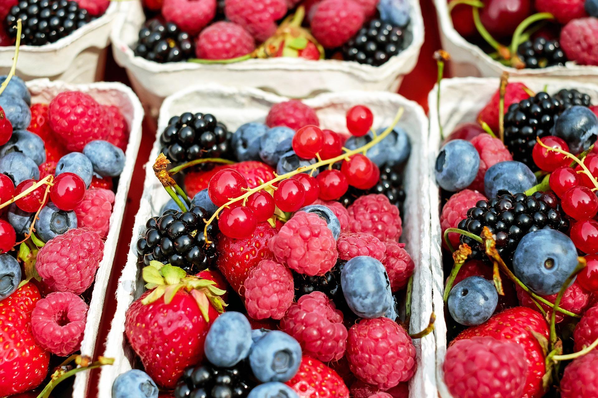 Studie: Deutsche wollen Spendepflicht für Lebensmittel